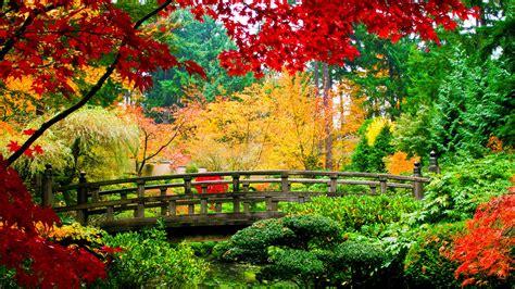 musica da rilassante musica per meditazione zen musica rilassante per