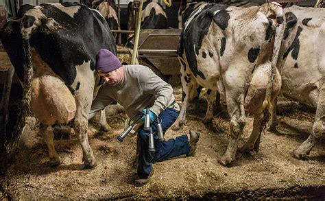 bäder modern 4700 млякото и болестите в съвременния свят българско