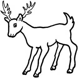 For Education New Animal Deer Coloring Pages sketch template