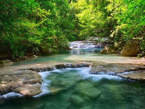 thailand tropical vegetation green river  waterfalls