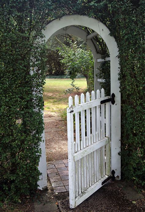 Garden Arch Gate Uk by Images About Garden Arches On Arbor Gate 1000