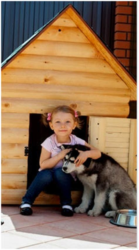 do it yourself dog houses 100 free do it yourself dog house plans and building guides