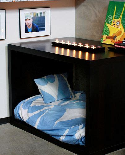 expensive dog beds 25 diy pet bed ideas expensive dogs pets and dogs
