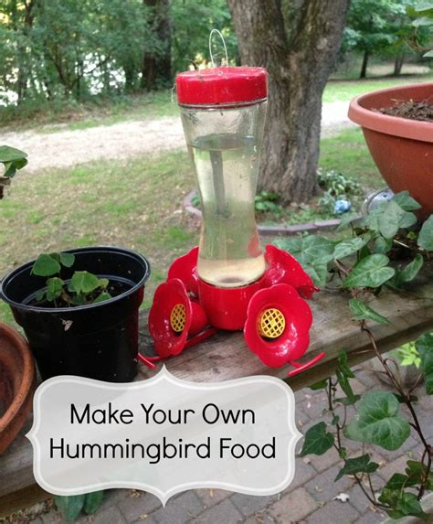 how to make hummingbird food thrifty jinxy