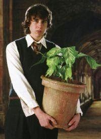 harry potter herbology  garden design