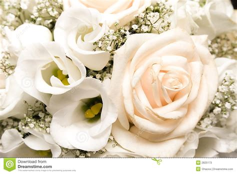 Wedding Bunch Of Flowers by Wedding Bunch Of Flowers Stock Photos Image 2825173