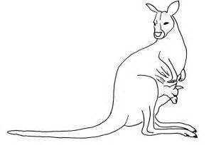 desenho colorir animais 3