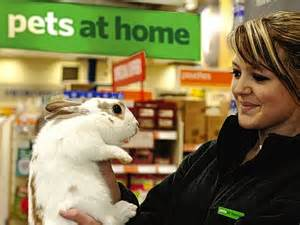 pets at home staff set to celebrate a 163 130m windfall as