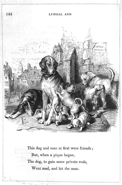 poems about dogs dying an elegy on the of a mad books health and history