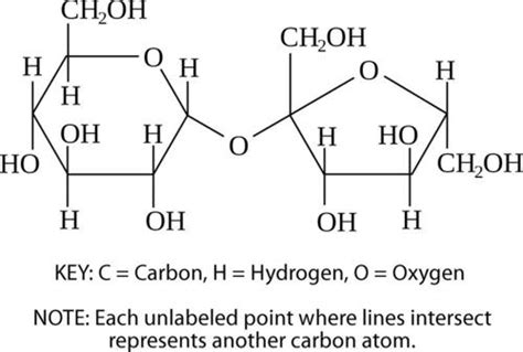 carbohydrates monomer structure carbohydrates ck 12 foundation