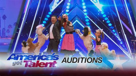 america s got talent act pompeyo family dogs animal act entertains with their agt america s got