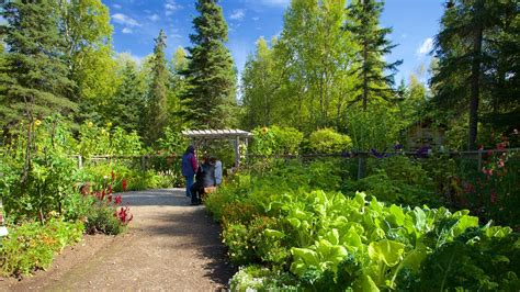 botanical gardens anchorage alaska botanical garden anchorage expedia co in