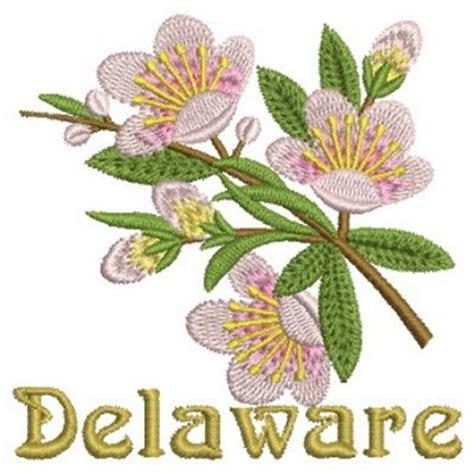 delaware state flower delaware state flower embroidery designs machine
