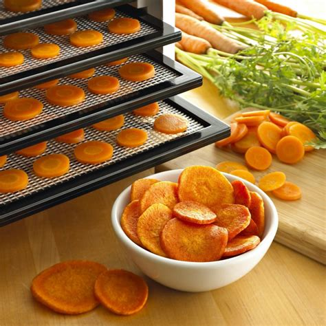 best food reviews 5 best food dehydrator reviews for 2018 guides and comparison