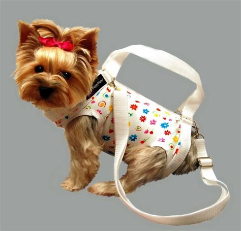 puppy purse instead of carrying your in your purse just carry your as a purse crafts