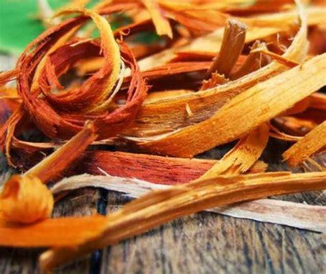 hidup sehat   manfaat kayu secang