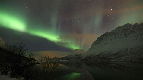 Whale Northern Lights In Troms 248 4 Days 3