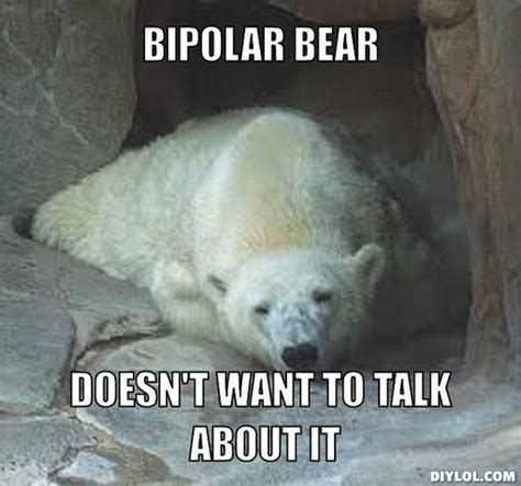 Bear Meme Generator - 133 best images about bipolar craziness on pinterest