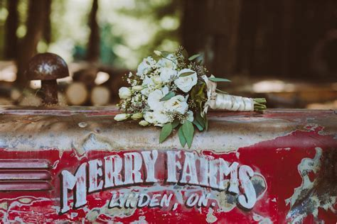 Amanda & Phil Get Married   Christmas Tree Farm Wedding