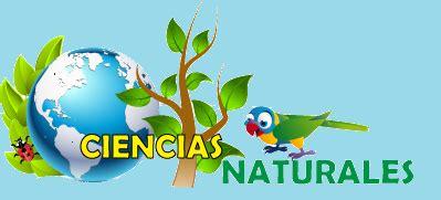 imagenes sobre ciencias naturales palobaba ciencias naturales