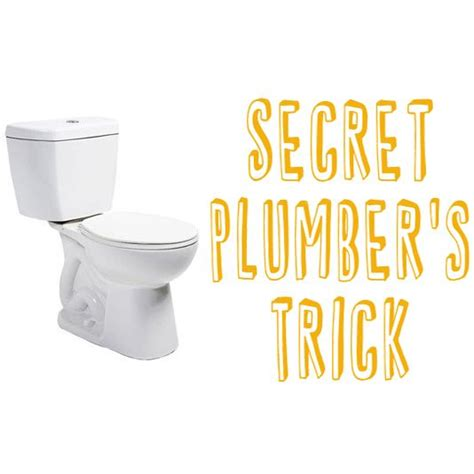 Learn The Secret Plumbers Trick to Unclog A Toilet   Toilets, A house and Clogs