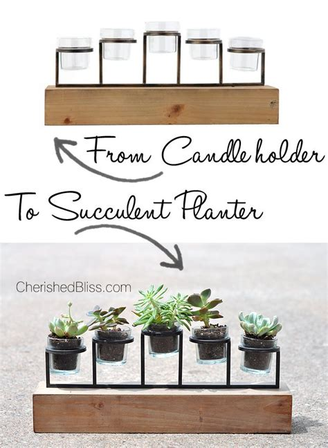 Indoor Succulent Planter by 25 Trending Succulent Planters Ideas On