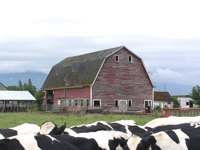 30x30 gambrel hip roof barn custom barns and buildings image gallery hip roof barn