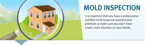 mold inspection houston announce decrease in latinos reporting crimes