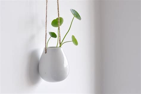 white hanging planter white egg shaped ceramic container hanging planter