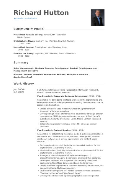 sle resumes for vice presidents sle resume for vice president sales and marketing sle