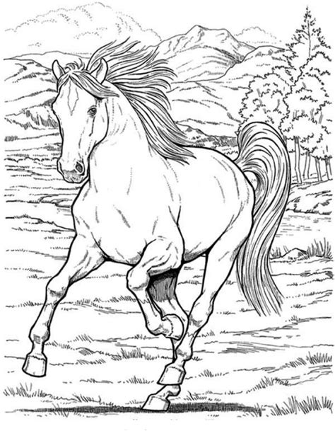 17 best ideas about horse coloring pages on pinterest