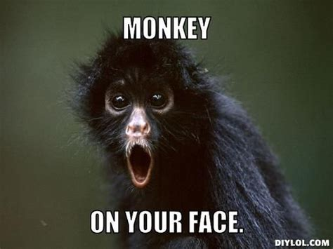 Monkey Face Meme - 35 very funny monkey meme photos and pictures