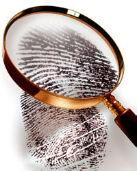 Fairfax County Arrest Records Search Check Background Check Usa