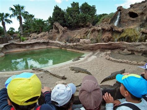 theme park lanzarote theme parks and waterparks in lanzarote