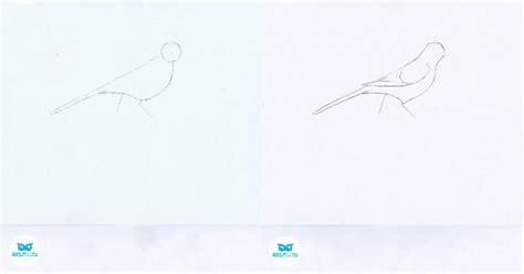 como dibujar con luz blue nature 191 c 243 mo dibujar aves