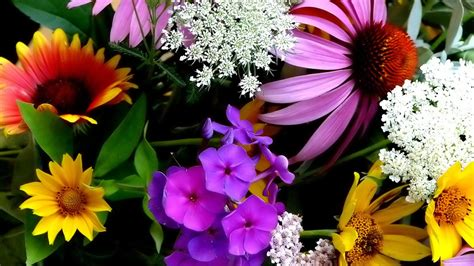 wallpaper flower full size download 1366x768 hd wallpapers group 89