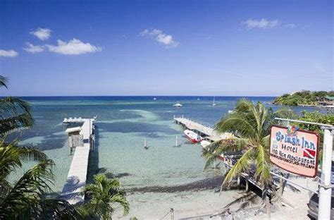 roatan dive resorts roatan resorts