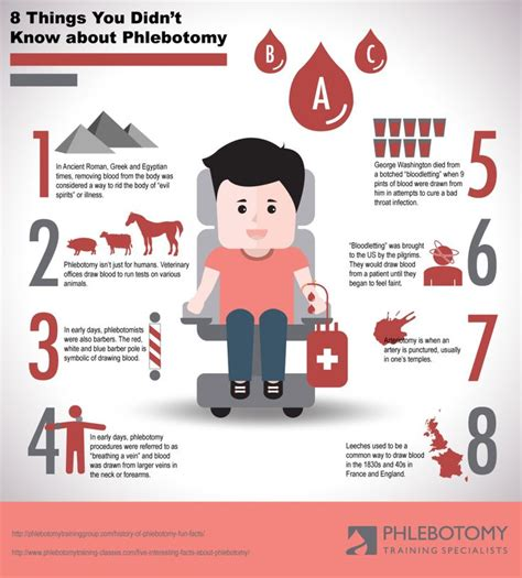 8 Things You Didnt About And Attraction by 17 Best Images About Phlebotomy Info On Lab