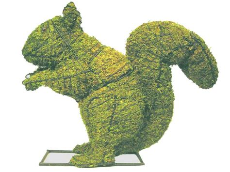 squirrel animal topiary frame - Squirrel Topiary