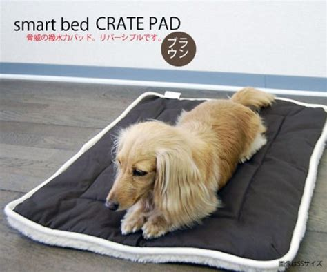 dog gone smart bed dog gone smart bed dgscps2803 cotton dog crate pad with