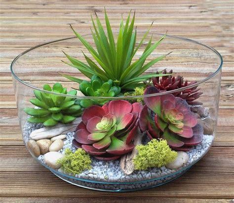 piante grasse in vaso di vetro succulente in vaso di vetro piante e arredo