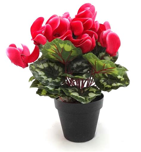 Artificial Flowers For Garden Artificial Cyclame Plant And Artificial Flowering Plants At Evergreen