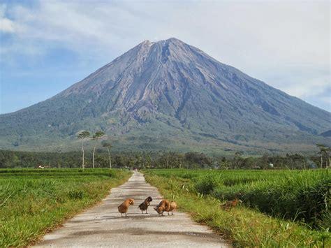 Wisata Jawa Timur   Gunung Semeru   Aneka Tempat Wisata