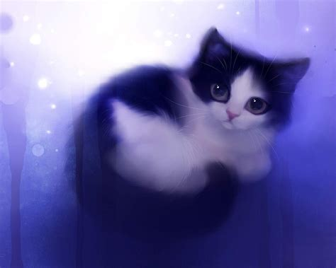 Cat Wallpaper (Cartoon, Cute, Purple) HD Cat Wallpaper