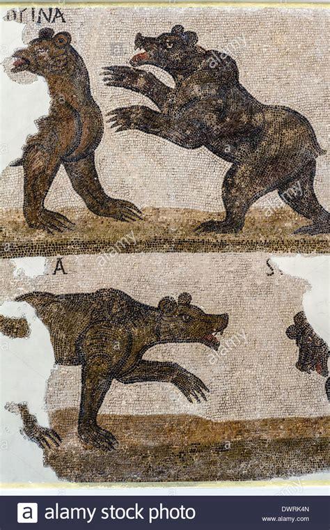 fresco animal fresco animal jennies nilotic mosaic bc sanctuary