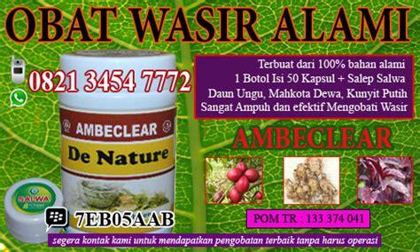 Cara Membuat Obat Wasir Herbal cara menyembuhkan wasir dengan alami obat wasir ambeien