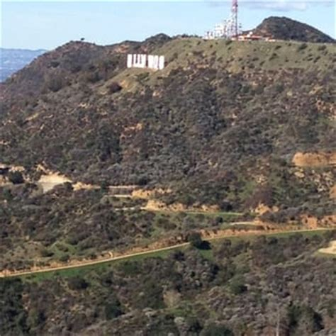 hollywood sign view near me charlie turner s trail 168 photos 36 reviews hiking