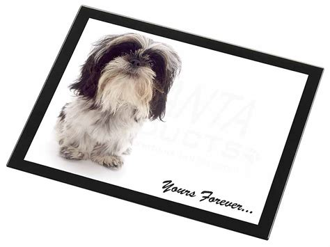 shih tzu gift shih tzu black glass placemat animal table gift id 99380