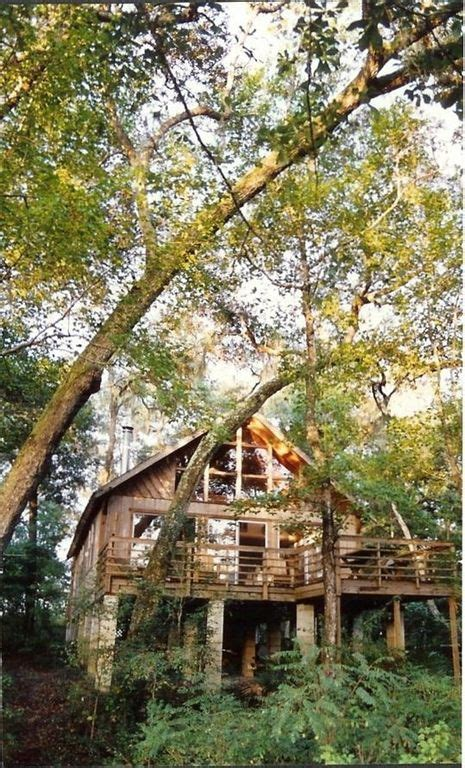 Suwannee River Cabins by Suwannee River Rendezvous 9 Photos 3 Reviews Mayo Fl 5