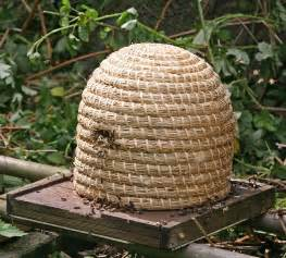 types of beehives home farmer